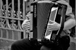 Recherche un réparateur d'accordéon