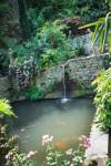 Promenade au Jardin d'Eden 3