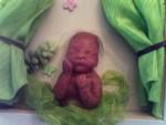 Cadre avec bébé reborn 2