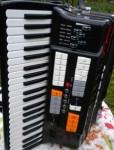 Accordéon très rare acoustique normal 120 basses avec valise en