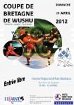 Compétition régionale d'arts martiaux de chine (kung-fu et tai