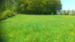 972MT Maison+Terrain à Champier