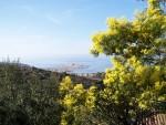 Villas de vacances à l'Ile Rousse (haute Corse)