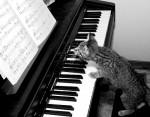 Cours de Piano dans le 95