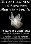 31è bourse vente de minéraux et fossiles à Castelginest
